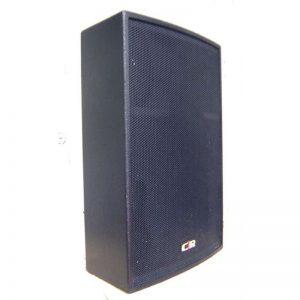 Enceinte Q110 C2R AUDIO